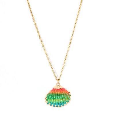 Collier shell rainbow